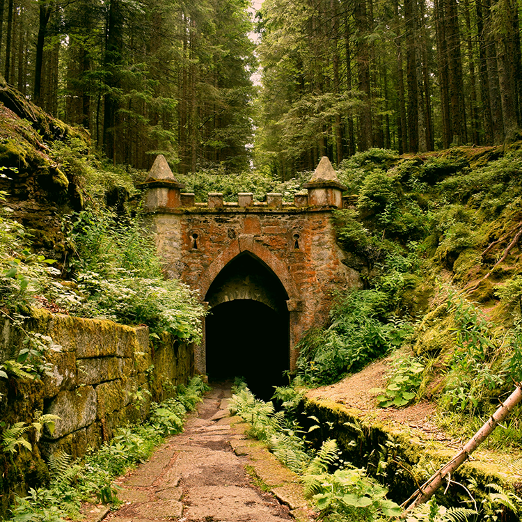 A medieval tunnel in an overgrown forest.