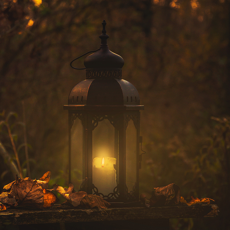 A lantern glowing with fall leaves.